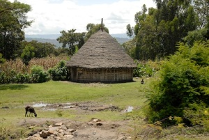 Ethiopia House in the country